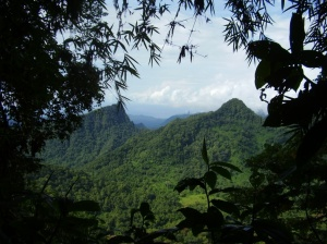 Island biodiversity best conserved in inaccessible landscapes